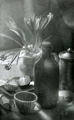 photo: с половинками лайма | photographer: Лора Михайленко | WWW.PHOTODOM.COM