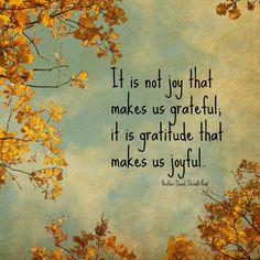 It is not joy that makes us grateful. It is gratitude that makes us joyful.