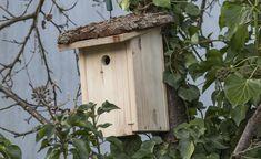 Vogelhäuser Vogelhäuschen bunt Holz Nistkasten Nisthilfe Vogelkasten Bruthilfe