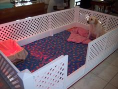 Puppy Corral | My Whelping Box | Dynamic Whelping box and Puppy Pen System.