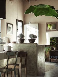 ✭ Beautiful modern rustic kitchen - like the plants Rustic Elegance, Modern Rustic, Rustic Feel, Urban Rustic, Rustic Style, Country Style, Kitchen Interior, Interior And Exterior, Modern Flooring