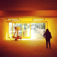 Schieblok, luchtsingel, Rotterdam