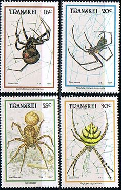 Transkei 1987 Spiders Set Fine Mint                    SG 205 8 Scott 187 90 Other African and British Commonwealth Stamps HERE!