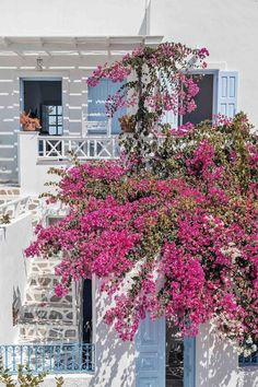 If you are wondering where to stay in Santorini or specifically looking for Airbnb Santorini rentals, you have come to the right place! I've rounded up the twelve best Santorini Airbnb options in the best place to stay in Santorini. Cheap Hotels In Santorini, Santorini Travel, Santorini Greece, Greece Honeymoon, Greece Vacation, Greece Travel, Best Hotels In Greece, Airbnb Accommodation, Greek Decor