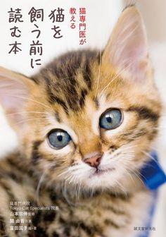 書籍「猫を飼う前に読む本」のイラストを担当しました。
