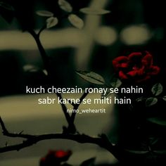# its true# Deep Thought Quotes, Hindi Words, Heart Touching Shayari, Weird Facts, Crazy Facts, My Poetry, Islamic Pictures, Love Pictures, Hindi Quotes