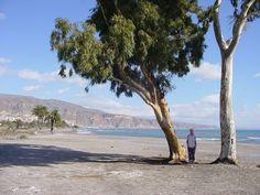 beach between Roquetas de Mar & Almería photo by Robert Bovington http://www.panoramio.com/user/2391258