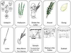 Free set of Sukkot playing cards. Just download and print two times. Now your students or children can play Go Fish or Memory. Great idea to review Sukkot symbols and play a fun game in the Sukkah.