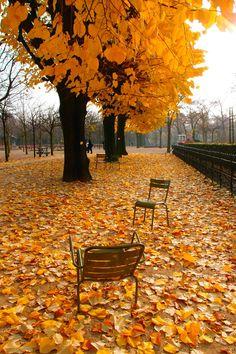 Autumn in Paris ~ Jardins du Luxembourg by Anibal Gondim on 500px