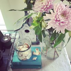#bloomandwild #dahlias #beautifulflowers