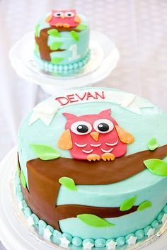 Owl cake for baby's first birthday