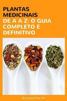 Plantas medicinais: 24 ervas para ter na cozinha