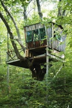 Rustic and unique tree house