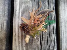 Coolest boutonierre I've seen yet! Natural dried oak leaves, preserved pine branches, pine cones, twigs & moss.. Oh yeah. :)