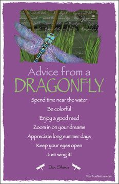 Dragonfly totem: You have the ability to manifest other realms which will show up in dreams | Dragonfly Totem | Pinterest | Totems, Other and My Cousin