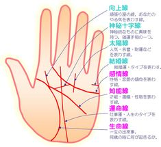 Pin by Ryoya Ito on インスタレーション関係 Good Fortune, Fortune Telling, Chinese Face Reading, Derma Roller, Palmistry, My Favorite Image, Infographic, Cancer, Knowledge