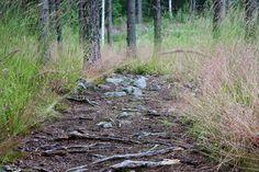 Suomi Tour: Päijätsalonvuoren näkötorni
