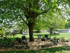 AUVERGNE - Domaine La Terrasse - 2 gites / table d' hote / camping / safaritenten - opbouw zwembad, mooi groen domein