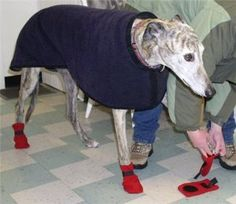 Sew Your Own Winter Dog Boots - For pet lovers that live in cold climates, this free sewing patterns is a must have. Keep your dog's feet toasty with these adorable, and fashionable, sewn dog boots.