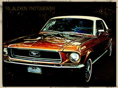 Mustang #Classic #Cars #Photography