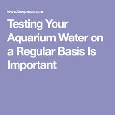Testing Your Aquarium Water on a Regular Basis Is Important