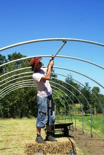 Polytunnel construction from a customer's perspective - Part 3: Frame