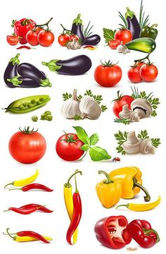 Vegetables Police Script, Vegetable Pictures, Food Graphic Design, Fruits Images, Watercolor Fruit, Watercolor Painting Techniques, Object Drawing, Food Icons, Digital Painting Tutorials