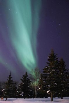 Northern lights. Fairbanks, Alaska. March 17, 2012.  How incredible!  Would love to see these in person!