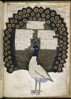 Convenevole da Prato TitleAddress in verse to Robert of Anjou, King of Naples, from the town of Prato in Tuscany (the 'Regia Carmina') OriginItaly, Central (Tuscany) c. 1335-c. 1340 Latin