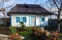Floarea soarelui - Poza din Delta Dunarii Danube Delta, Bucharest Romania, European House, Good House, Black Sea, Case, Gazebo, Houses, Outdoor Structures