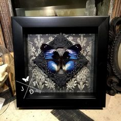 Blue Diadem Butterfly in gothic frame