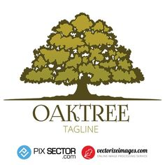 Free Vector Tree Logo - Pixsector Vector Trees, Free Vector Illustration, Tree Logos, Psd Templates, Free Vector Images, Photos, Pictures, Wood Logo