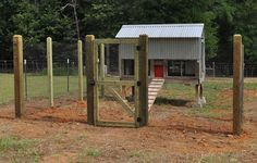 Protection | Planning Your Chicken Coop