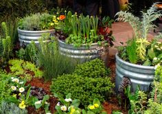 Improving drainage by creating a raised bed - Gardening Site Raised Garden Planters, Raised Garden Beds, Raised Beds, Garden Plants, Stock Tank, Garden Show, Garden Centre, Spring Plants, Container Gardening