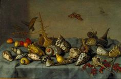 File:Bartholomeus van der Ast still life with shells.jpg
