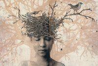 2013 - Piia Lehti Bird Feathers, Printmaking, Birds, Artwork, Nests, Painting, Finland, Image, Collage