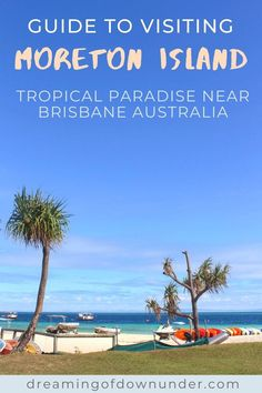 Find out how to get to Moreton Island from Brisbane, Australia, what to see, including Tangalooma Wrecks, Champagne Pools and sand dunes plus where to stay: Moreton Island camping, glamping and Tangalooma Island Resort! #brisbane #tangalooma #australia #traveldestinations Coast Australia, Queensland Australia, Things To Do In Brisbane, Boat Hire, Australia Travel Guide, Travel Advise, Airlie Beach, Island Resort, Best Places To Travel