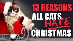 It's the most wonderful time of the year…for pretty much everyone except cats. There are so many reasons why our beloved feline friends might want to Scrooge out during the holidays, and Lifetime's Grumpy Cat's Worst Christmas Ever goes a long way toward exploring them. Here are 13 other reasons why your cats might be …