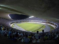 Mangueirão Belém Pará. Paysandu Sport Club #paysandu #payxao