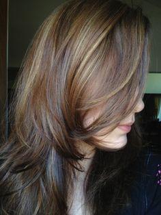 """""""Bronde"""" Hair Dark brown to Blonde"""
