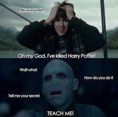 Voldemort would definitely be like this if it happened!!