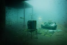 andreas franke - underwater photography exhibition, studying