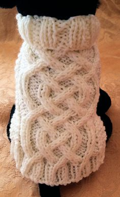 Knit Dog Sweater knitting pattern Celtic Braid by KnittyDebby