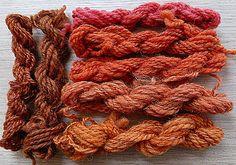 Colours from buckthorn bark