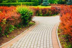 Stone Pathway Walkway Lane Path With Green Trees And Bushes In Garden. Uniform brick stones are laid along this pathway's length.