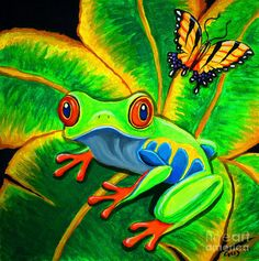 Endangered Red Eyed Tree Frog And Butterfly by Nick Gustafson
