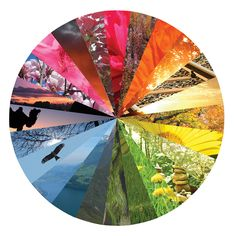 an artist made a color wheel out of different settings Diy With Kids, Color Wheel Projects, Color Wheel Art, 6th Grade Art, Principles Of Art, Guache, School Art Projects, Creative Colour, Elements Of Design