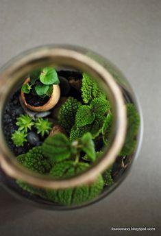 DIY - how to make a forest in a jar Terrarium, Snowflakes, Diy Ideas, Picnic, Vegan Recipes, Christmas Decorations, Jar, Organic, Organization