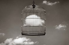 Surreal Black-And-White Photos Cleverly Combine Seemingly Different Objects by Chema Madoz