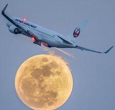Japan Airlines Boeing 767-346/ER